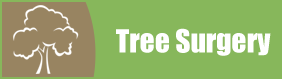Tree Icon - Tree Felling in Leeds, West Yorkshire